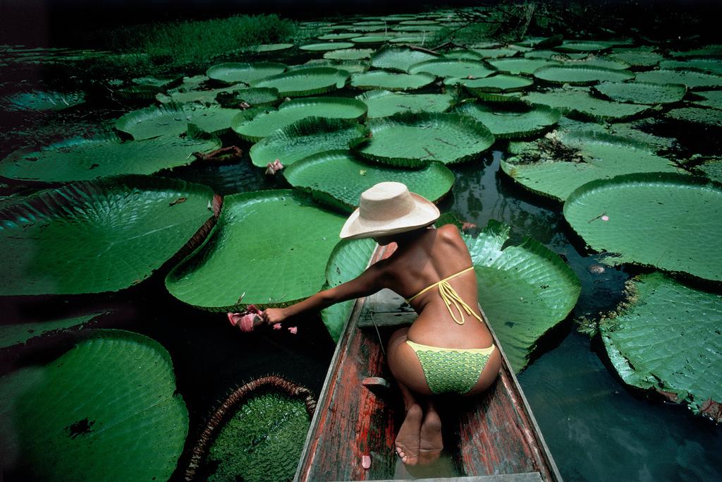 The Amazon, 1997